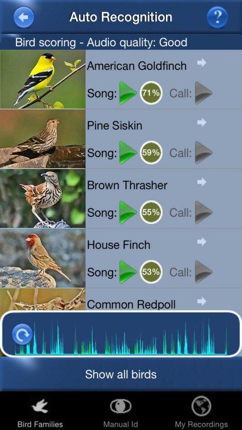 bird song id