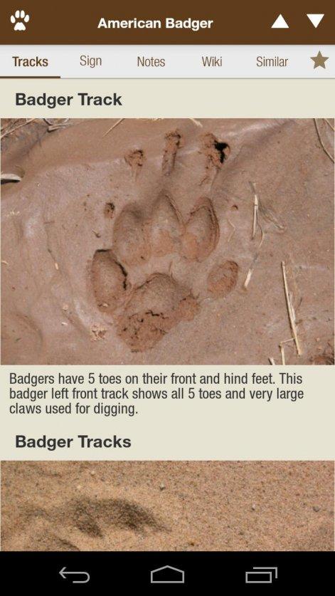 itrack wildlife
