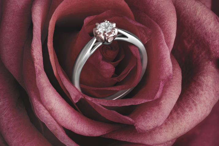 rose edit_02