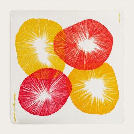 meshi-no5-kolorowa